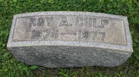 CULP, ROY A. - Trumbull County, Ohio | ROY A. CULP - Ohio Gravestone Photos