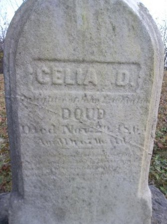 DOUD, CELIA D. - Trumbull County, Ohio | CELIA D. DOUD - Ohio Gravestone Photos