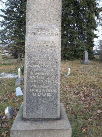 DOUD, HANNAH M. - Trumbull County, Ohio | HANNAH M. DOUD - Ohio Gravestone Photos