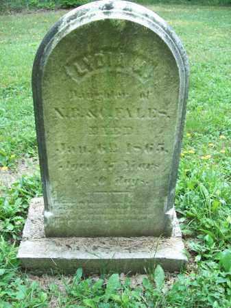 MCKEE FALES, LYDIA A. - Trumbull County, Ohio | LYDIA A. MCKEE FALES - Ohio Gravestone Photos