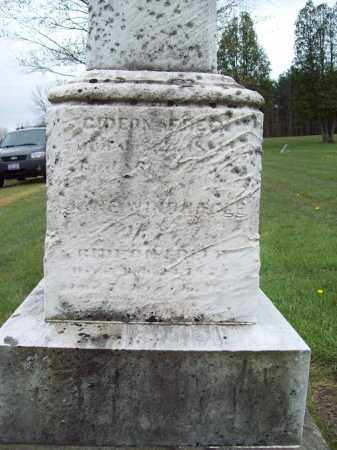 FREER, JANE - Trumbull County, Ohio | JANE FREER - Ohio Gravestone Photos