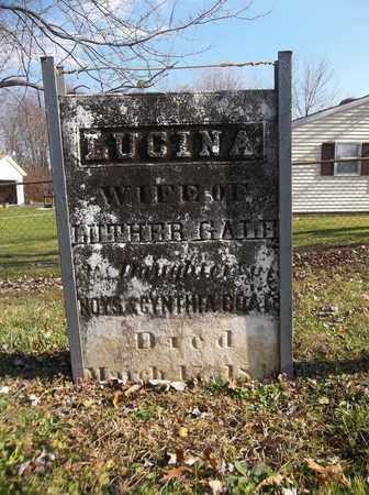 GALE, LUCINA - Trumbull County, Ohio | LUCINA GALE - Ohio Gravestone Photos