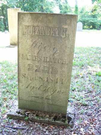 HATCH, ELIZABETH - Trumbull County, Ohio | ELIZABETH HATCH - Ohio Gravestone Photos