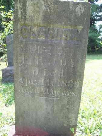 NORTON JOY, CLARISSA - Trumbull County, Ohio | CLARISSA NORTON JOY - Ohio Gravestone Photos