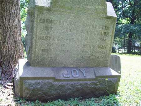 JOY, MARY ELIZABETH - Trumbull County, Ohio | MARY ELIZABETH JOY - Ohio Gravestone Photos
