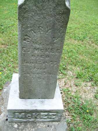 MCKEE, MARY ANN S. - Trumbull County, Ohio   MARY ANN S. MCKEE - Ohio Gravestone Photos