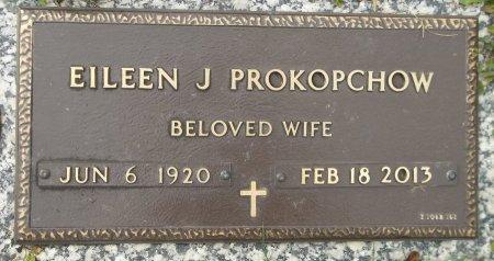 PROKOPCHOW, EILEEN J. - Trumbull County, Ohio | EILEEN J. PROKOPCHOW - Ohio Gravestone Photos