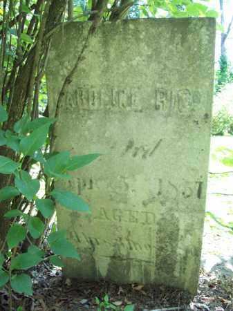 RICE, CAROLINE - Trumbull County, Ohio | CAROLINE RICE - Ohio Gravestone Photos