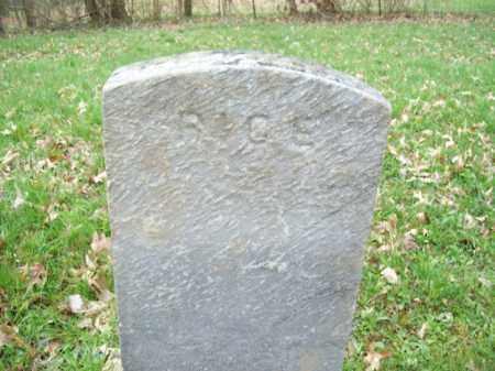 RICE, RHODA - Trumbull County, Ohio   RHODA RICE - Ohio Gravestone Photos