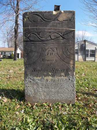 SPERRY, SOPHIA - Trumbull County, Ohio | SOPHIA SPERRY - Ohio Gravestone Photos
