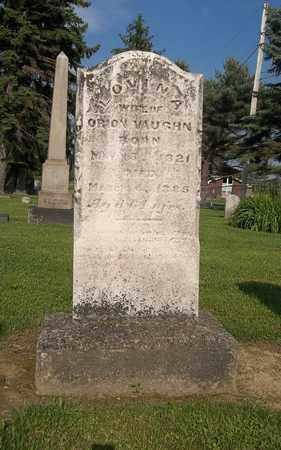 VAUGHN, LOVINA - Trumbull County, Ohio | LOVINA VAUGHN - Ohio Gravestone Photos