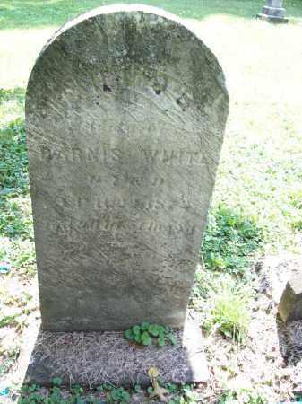 OSBORN WHITE, CHLOE - Trumbull County, Ohio   CHLOE OSBORN WHITE - Ohio Gravestone Photos