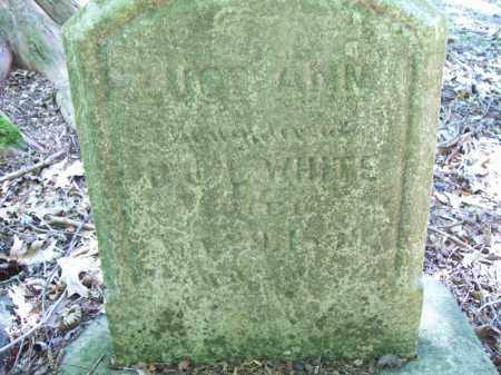 WHITE, LUCE ANN - Trumbull County, Ohio   LUCE ANN WHITE - Ohio Gravestone Photos