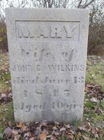 WILKINS, MARY - Trumbull County, Ohio | MARY WILKINS - Ohio Gravestone Photos