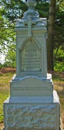 BIDDLE, HENRY - Tuscarawas County, Ohio | HENRY BIDDLE - Ohio Gravestone Photos