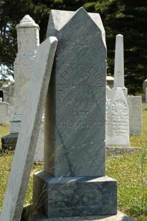 BIDDLE, JACOB G. - Tuscarawas County, Ohio | JACOB G. BIDDLE - Ohio Gravestone Photos