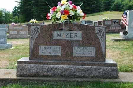 MIZER, GOLDIE M. - Tuscarawas County, Ohio | GOLDIE M. MIZER - Ohio Gravestone Photos