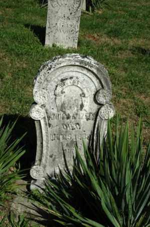 MIZER, JOHN - Tuscarawas County, Ohio | JOHN MIZER - Ohio Gravestone Photos