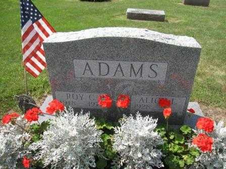 ADAMS, ROY C. - Union County, Ohio | ROY C. ADAMS - Ohio Gravestone Photos