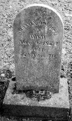 AMERINE, MOSSES - Union County, Ohio   MOSSES AMERINE - Ohio Gravestone Photos