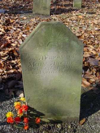 AMRINE, MARY - Union County, Ohio   MARY AMRINE - Ohio Gravestone Photos