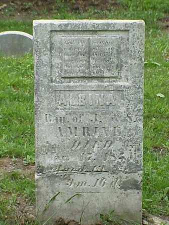 AMRINE, ALBINA - Union County, Ohio   ALBINA AMRINE - Ohio Gravestone Photos