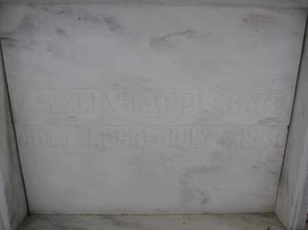 APPLEGATE, AMELIA B. - Union County, Ohio   AMELIA B. APPLEGATE - Ohio Gravestone Photos
