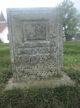 BEARD, ANDREW - Union County, Ohio | ANDREW BEARD - Ohio Gravestone Photos