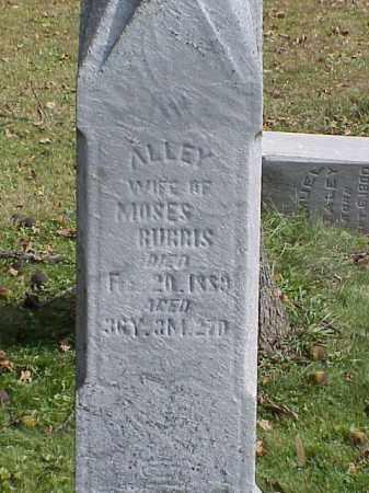 BURRIS, ALLEY - Union County, Ohio   ALLEY BURRIS - Ohio Gravestone Photos