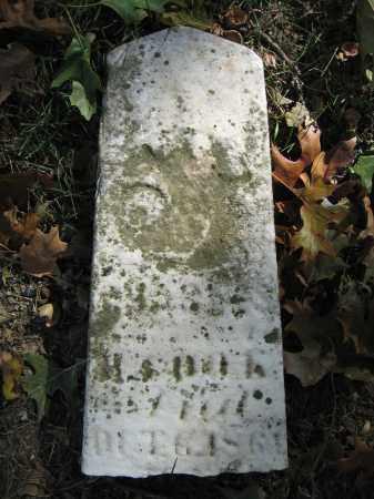 COOK, CHARLES - Union County, Ohio   CHARLES COOK - Ohio Gravestone Photos