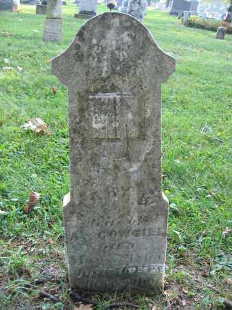 COWGILL, MARY W. - Union County, Ohio | MARY W. COWGILL - Ohio Gravestone Photos
