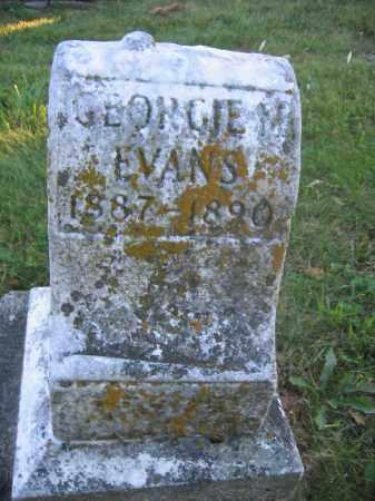 EVANS, GEORGE M. - Union County, Ohio   GEORGE M. EVANS - Ohio Gravestone Photos