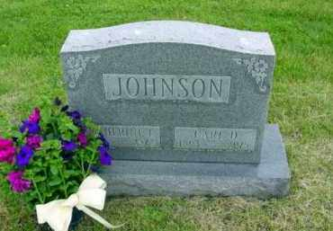 CLEMANS JOHNSON, CATHERINE - Union County, Ohio | CATHERINE CLEMANS JOHNSON - Ohio Gravestone Photos