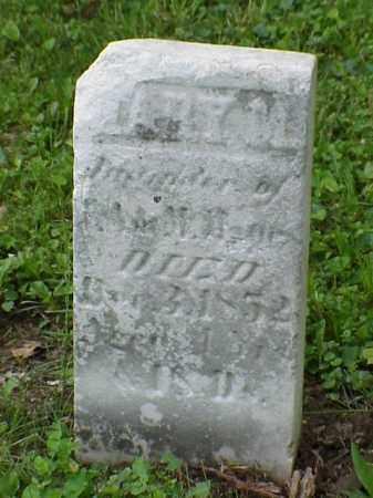 MAPES, MARY M - Union County, Ohio   MARY M MAPES - Ohio Gravestone Photos