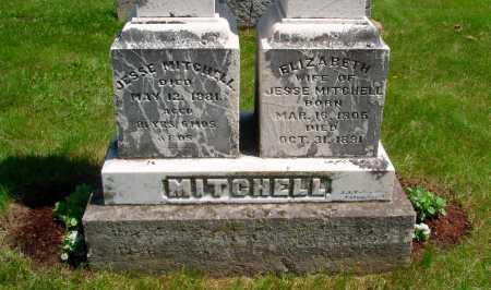 MITCHELL, ELIZABETH ROBINSON - Union County, Ohio   ELIZABETH ROBINSON MITCHELL - Ohio Gravestone Photos