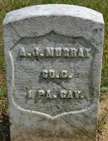 MURRAY, A.J. - Union County, Ohio | A.J. MURRAY - Ohio Gravestone Photos