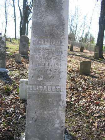 WESTLAKE, ELIZABETH - Union County, Ohio | ELIZABETH WESTLAKE - Ohio Gravestone Photos