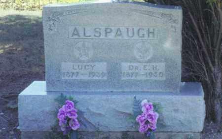 ALSPAUGH, DR. ELIJAH HENRY - Van Wert County, Ohio | DR. ELIJAH HENRY ALSPAUGH - Ohio Gravestone Photos