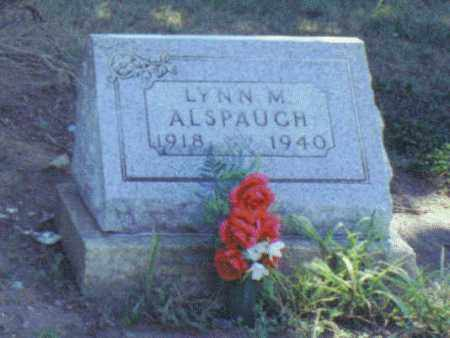 ALSPAUGH, LYNN MELVIN - Van Wert County, Ohio   LYNN MELVIN ALSPAUGH - Ohio Gravestone Photos