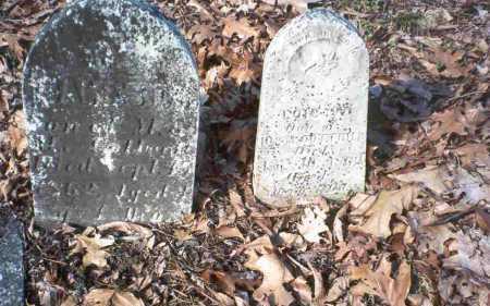 COTTRILL, JAMES & LOIS - Vinton County, Ohio   JAMES & LOIS COTTRILL - Ohio Gravestone Photos