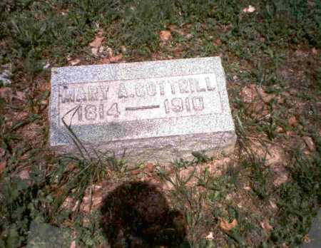 MCLAUGHLIN COTTRILL, MARY - Vinton County, Ohio | MARY MCLAUGHLIN COTTRILL - Ohio Gravestone Photos