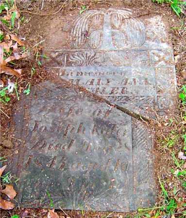 ENGLE KALER, MARY ANN - Vinton County, Ohio | MARY ANN ENGLE KALER - Ohio Gravestone Photos