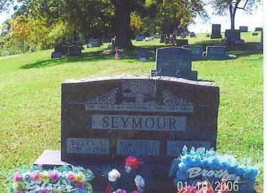 SEYMOUR, BETTY L. - Vinton County, Ohio | BETTY L. SEYMOUR - Ohio Gravestone Photos
