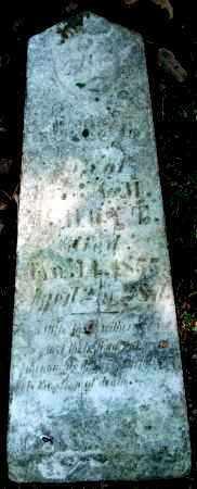 HOYT, MOSES B. - Warren County, Ohio | MOSES B. HOYT - Ohio Gravestone Photos