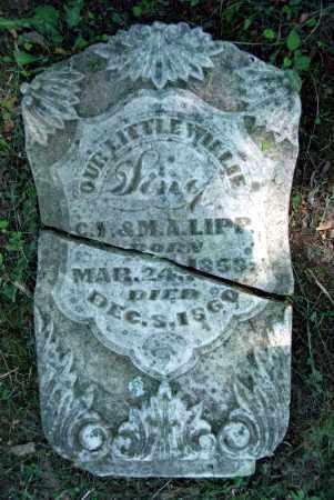 LIPP, WILLIE - Warren County, Ohio   WILLIE LIPP - Ohio Gravestone Photos