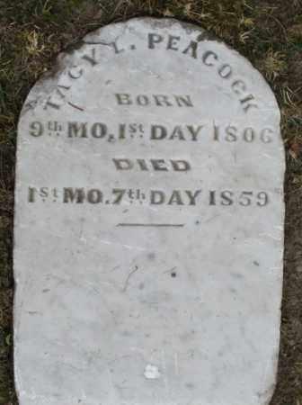 PEACOCK, TAGY - Warren County, Ohio   TAGY PEACOCK - Ohio Gravestone Photos