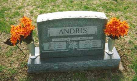 MAURIOCOURT ANDRIS, EMILIENNE - Washington County, Ohio   EMILIENNE MAURIOCOURT ANDRIS - Ohio Gravestone Photos