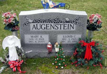 AUGENSTEIN, LLOYD CLYDE - Washington County, Ohio | LLOYD CLYDE AUGENSTEIN - Ohio Gravestone Photos