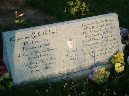 BABCOCK, RAYMOND GALE - Washington County, Ohio | RAYMOND GALE BABCOCK - Ohio Gravestone Photos