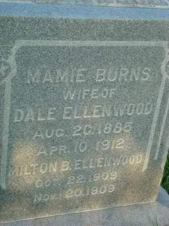 BURNS ELLENWOOD, MAMIE - Washington County, Ohio | MAMIE BURNS ELLENWOOD - Ohio Gravestone Photos